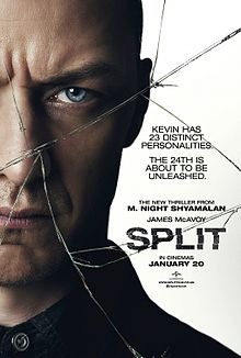 Split_2017_Poster.jpg
