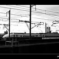 P8127195.jpg