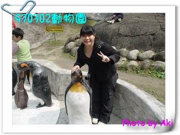 970302動物園.JPG