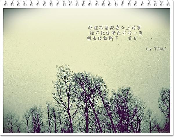 照片 9022.jpg