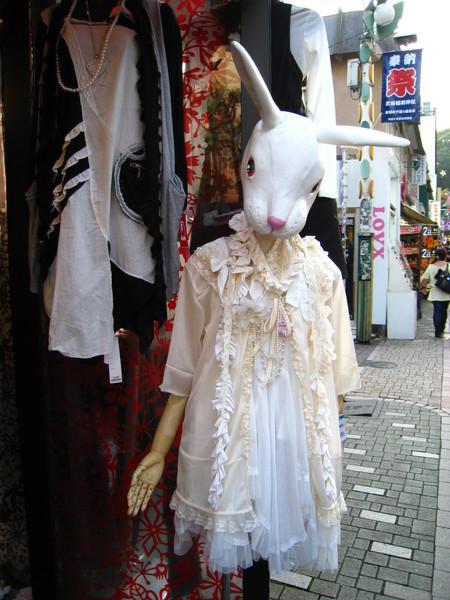 店名忘了 但是彬會帶這家店的衣服