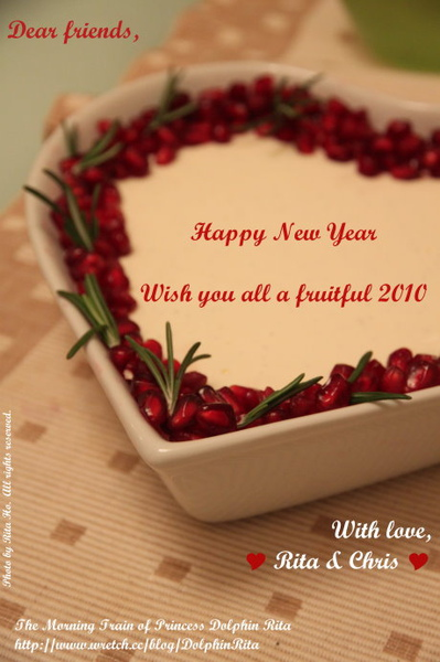 Happy New Year 2010.jpg