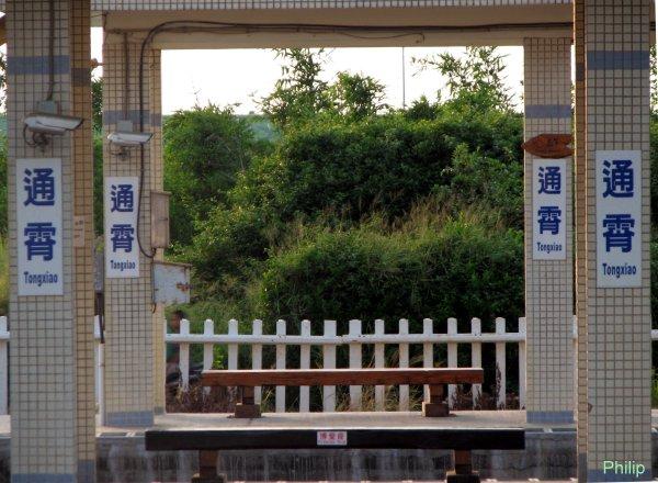 tongxiao4.jpg