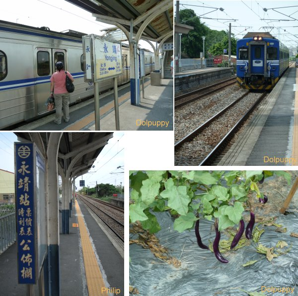 yongjing6.jpg