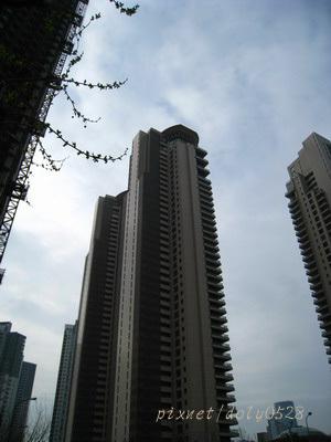 現代上海 (11).jpg