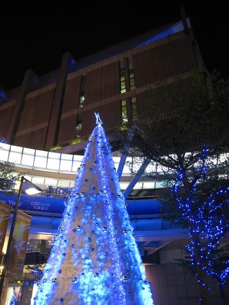 信義區賞聖誕燈 (3).JPG
