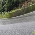 『2012第四屆雙溪櫻花馬拉松,朦朧的櫻花好硬的山路!』 (5)