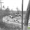 【主題賽事】-『充滿傳奇歷史的─波士頓馬拉松』 (15)