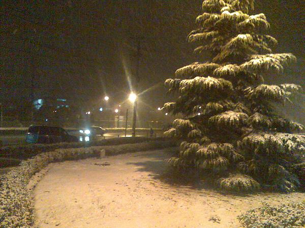 松林會館前的草地積雪