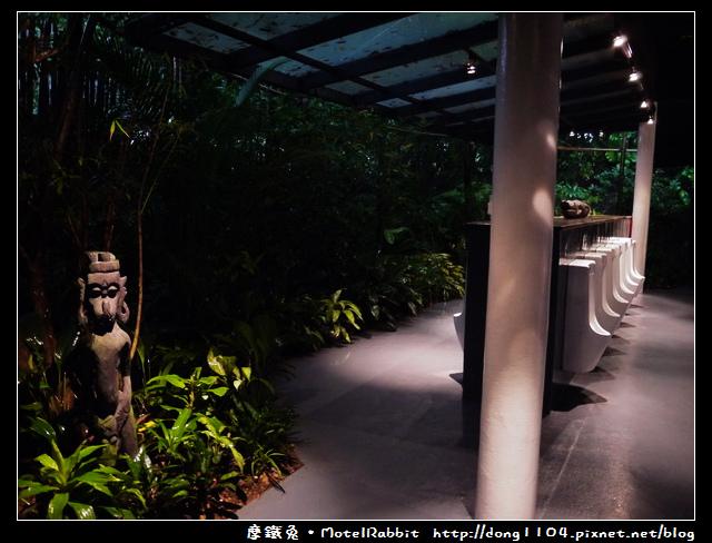 新加坡。夜間動物園