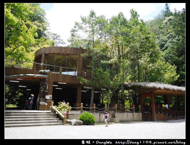 【南投遊記】杉林溪。遊園巴士。99吊橋。松瀧岩瀑布