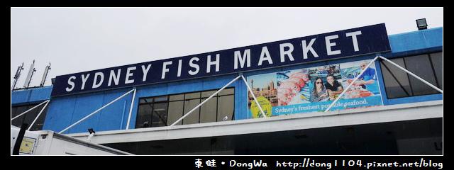 【雪梨遊記】SYDNEY FISH MARKET。雪梨魚市場