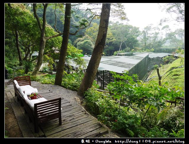 【新竹遊記】森林鳥花園。家庭親子好去處