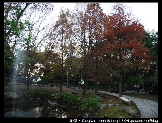 【桃園遊記】石門水庫賞楓步道。溪洲公園