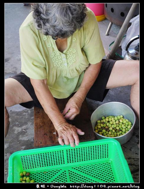 【台南遊記】玩瘋西拉雅。藕是蓮長。白河蓮花季