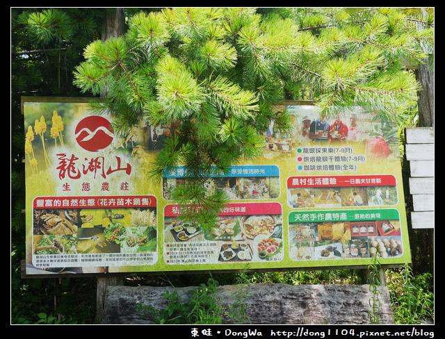 【台南食記】吃遍西拉雅。龍湖山生態農莊。特色咖啡餐點