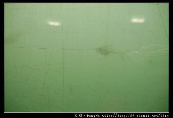 【台南遊記】安平區。運河博物館 河底隧道。原台南運河安平海關