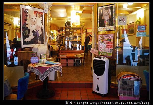 【台北食記】貓咪咖啡館|超多貓咪陪喝下午茶|芝山捷運站旁|小貓花園