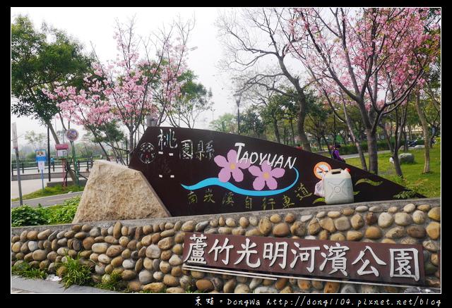 【桃園遊記】蘆竹南崁賞櫻好去處 光明河濱公園 富士櫻紀念園區