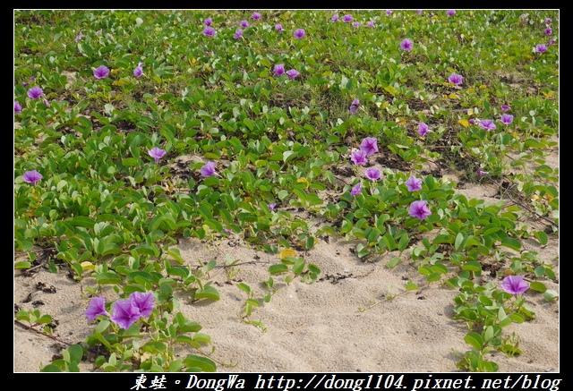 【澎湖遊記】南環必去景點|軟綿綿麵粉沙|山水沙灘