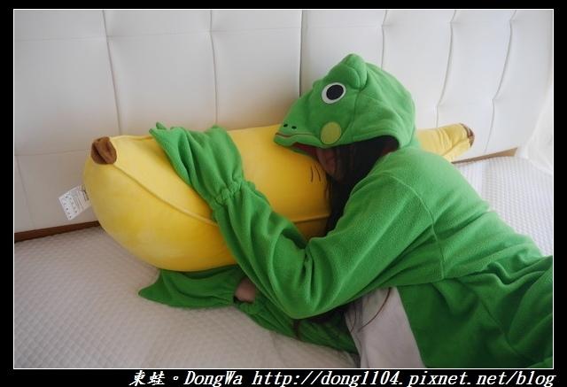 【開箱心得】防蟎抱枕 有效防止塵蜹滋生|Nevermite雷伏蟎防蟎專家