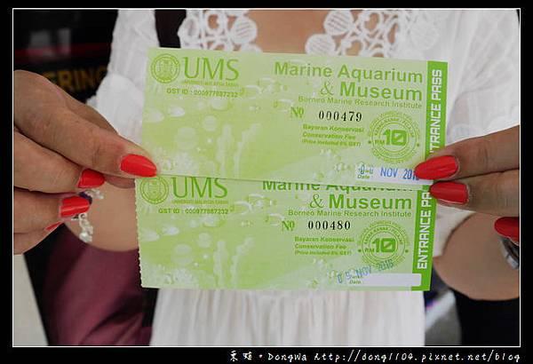 【沙巴自助/自由行】沙巴景點 沙巴大學 UMS 深海水族館( Aquarium and Marine Museum )