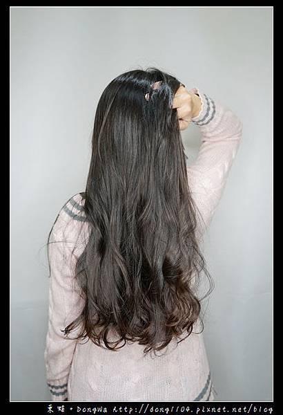 【中和美髮】中和美髮沙龍推薦 貓咪沙龍 寵物友善店家 IMPRIME 鉑金頂級護髮 閣樓髮藝 ATTIC HAIR SALON