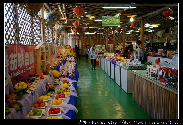 【新竹遊記】新竹免費景點|全國唯一蕃茄品種最多|金勇DIY蕃茄休閒農場