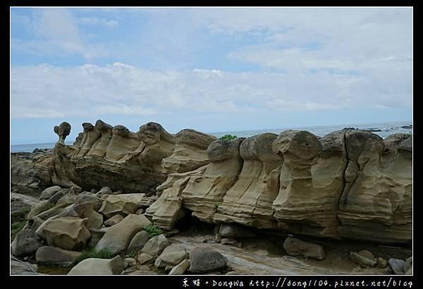 【台東遊記】台東免費景點 絕佳戶外地理教室 奇岩怪石各異其趣 小野柳遊憩區