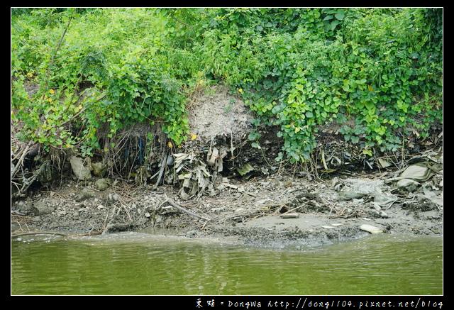 【高雄遊記】搭船遊二仁溪 探訪紅樹林 看彈塗魚打架|高雄市茄萣舢筏協會