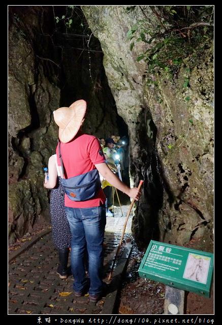 【屏東遊記】恆春生態遊旅推薦 豐富的動植物生態|社頂部落夜間生態遊程之旅