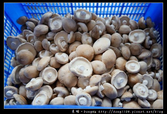 【台南遊記】關子嶺伴手禮|佔地三甲自營香菇園|木成香菇