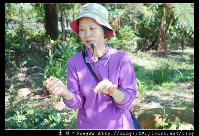 【桃園手作小旅行】驛品香生態農園 天然植物染大方巾DIY 農莊生態導覽
