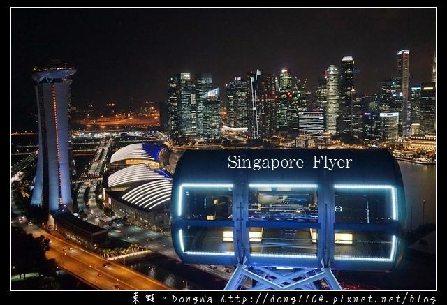【新加坡自助/自由行】新加坡景點推薦|濱海灣美麗夜景|新加坡摩天觀景輪 Singapore Flyer