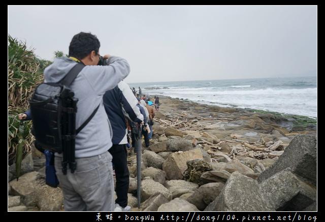 【基隆免費景點】愛玩客推薦 深澳漁港深澳岬角象鼻岩