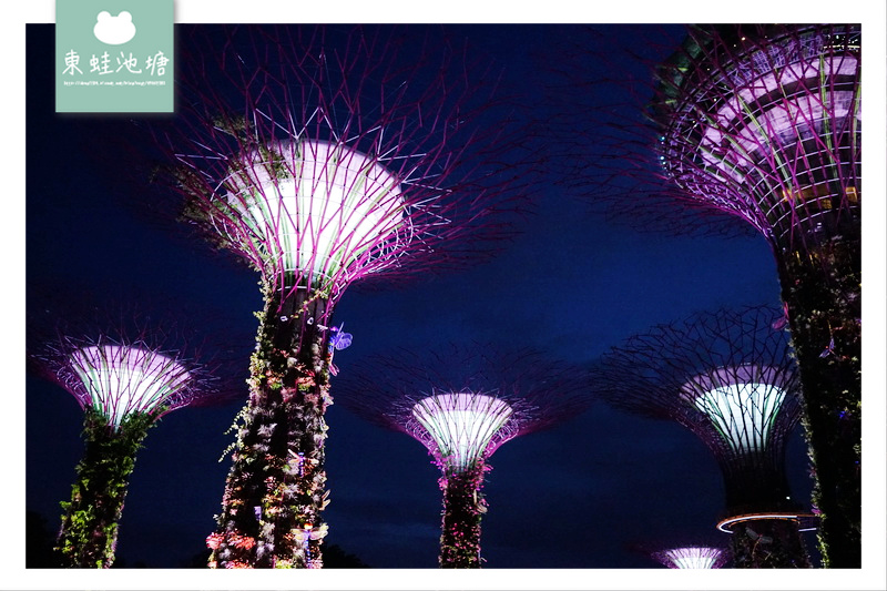【新加坡免費燈光秀推薦】GARDEN RHAPSODY 新加坡超級樹燈光秀 Supertree Grove Light Show