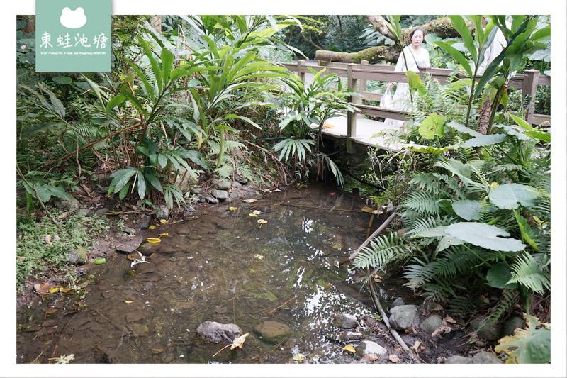 【台北大安區免費景點推薦】富陽自然生態公園 親子親近大自然的好選擇 好停車