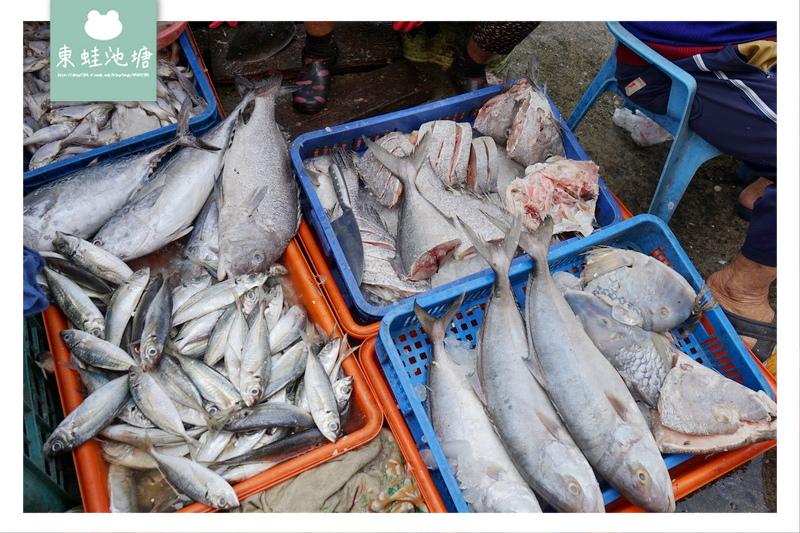 【澎湖逛市場趣】澎湖縣馬公市北辰公有市場 體驗澎湖在地生活 想買海鮮就來這
