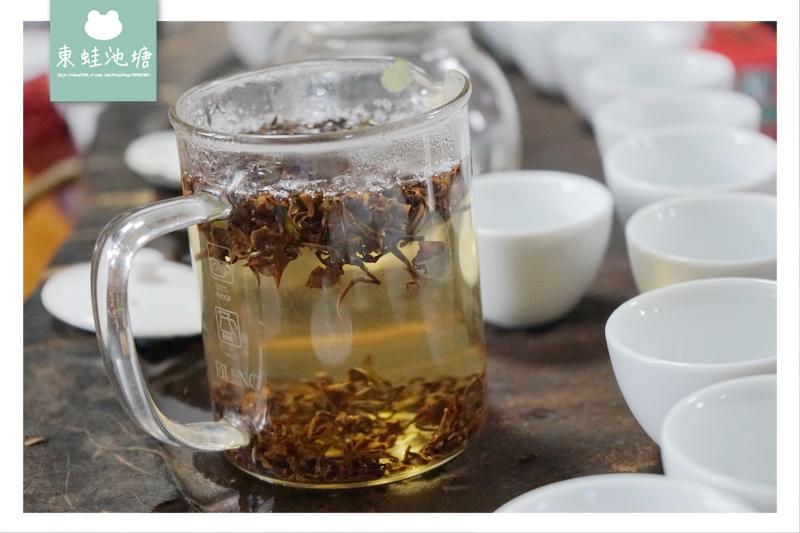 【苗栗頭份採茶趣】有機茶特等金牌獎 一心二葉東方美人茶 日新茶園
