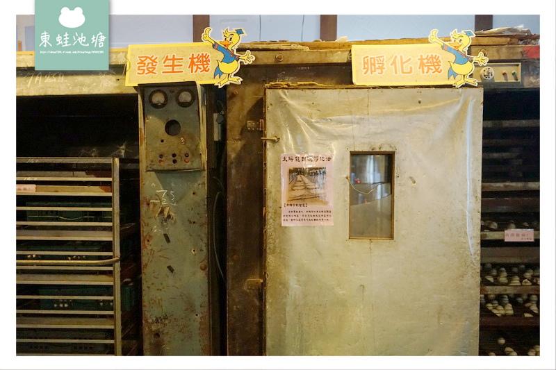 【宜蘭五結室內景點推薦】購買伴手禮的好去處 彩繪胖胖鴨DIY體驗 博士鴨觀光工廠