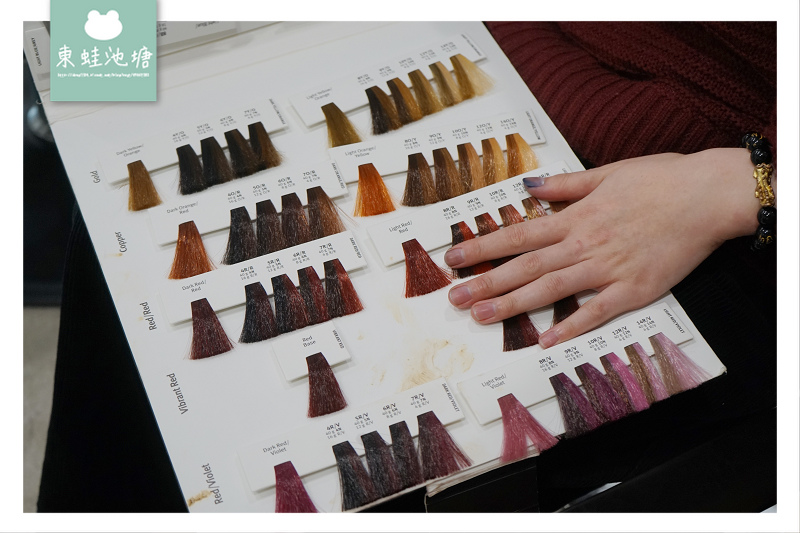 【竹北染髮推薦】AVEDA 花植染髮 93%天然萃取成分 精萃髮廊二館