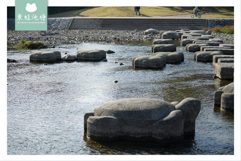 【京都免費景點推薦】京都夏天親子玩水行程 鴨川跳烏龜