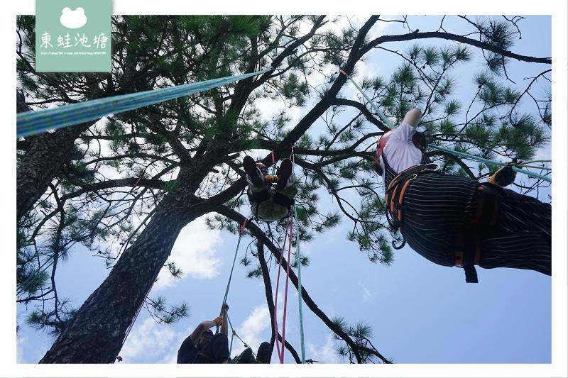 【桃園運動Fun漫遊】樹梢探險生態遊 石門水庫攀樹體驗