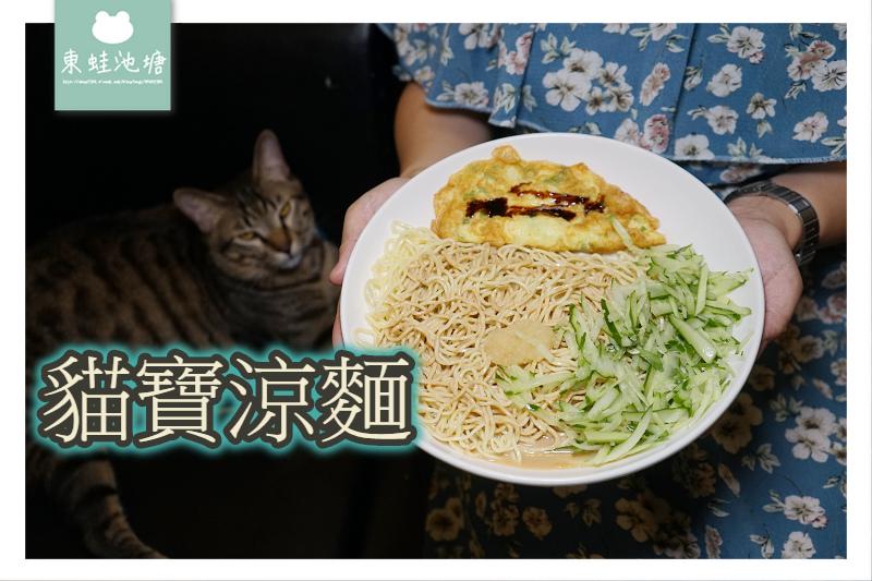 【內壢涼麵推薦】元智大學宵夜好選擇 大份量涼麵滷肉飯 貓寶涼麵