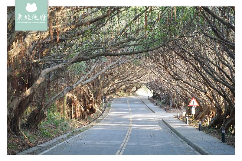 【馬祖西莒免費景點推薦】西莒IG拍照打卡 西坵綠色隧道有容路