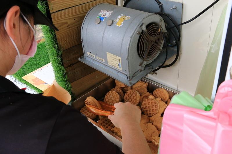 【桃園蘆竹海福宮】土地公慶生活動 雞排熱狗免費吃 擲杯送發財金雞母