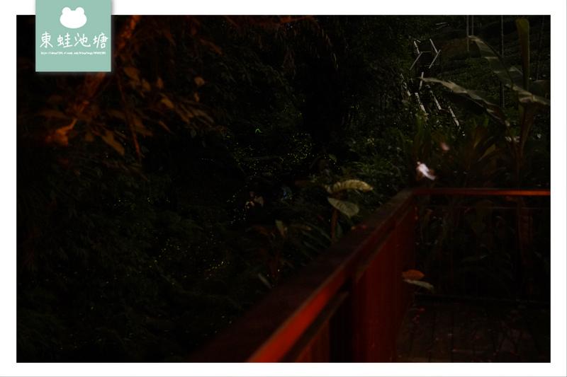 【嘉義梅山免費景點推薦】台版九寨溝秘境瀑布 瑞興吊橋+太興飛瀑步道