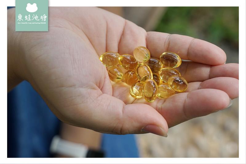 【大研生醫 德國頂級魚油】rTG型式吸收率最高 德國100%純魚油
