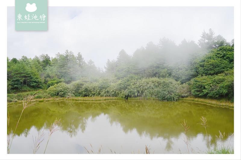 【台中一日遊景點推薦】絕美小雪山天池+雪山神木 大雪山國家森林遊樂區
