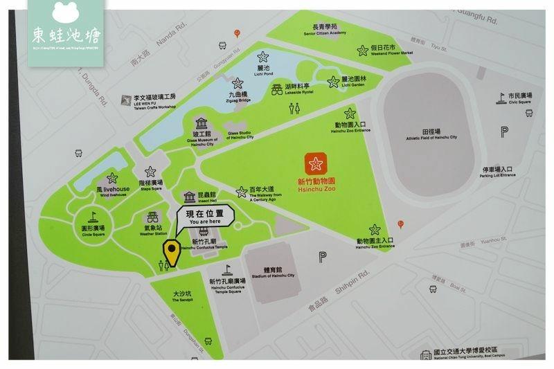 【新竹賞櫻好去處】2021超美河津櫻盛開綻放中 新竹公園/麗池公園